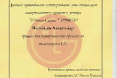 vagaycev